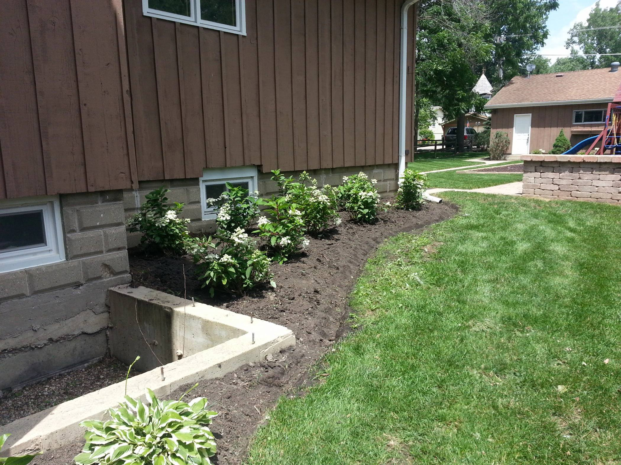 After-the-cleanup-and-new-Hydrangea