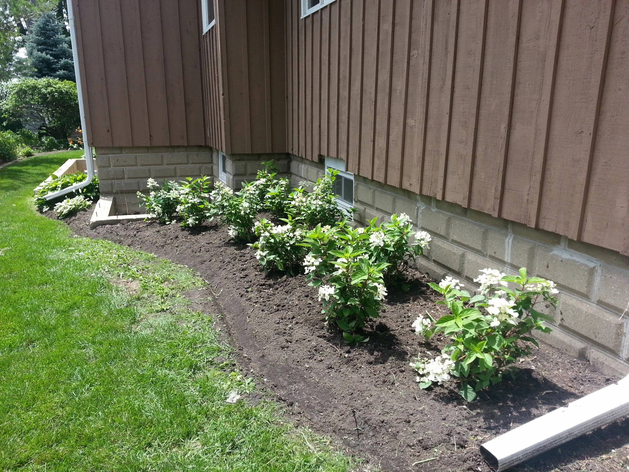 After-the-Makeover-side-yard